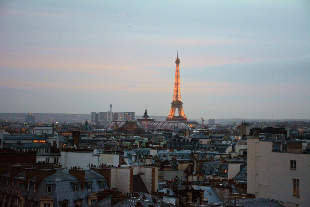 View of Paris from Pritempts roof