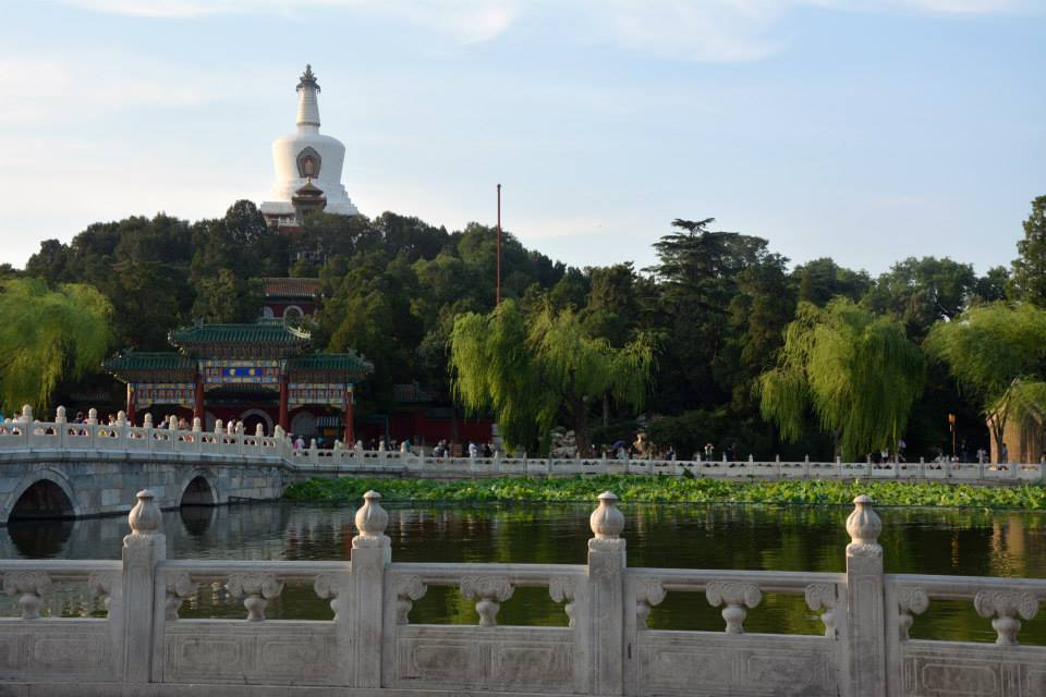 An image of Beihai Park with lillypads on the water