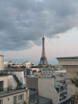 View of Paris from the Peninsula's roof